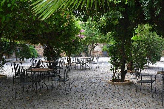 Hotel Sao Joao de Deus : The beautiful garden