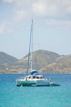 Celine Charters: Boat