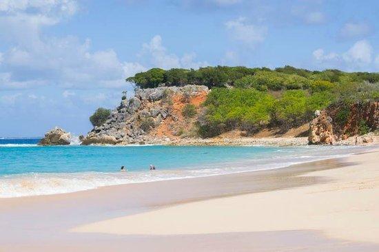 Celine Charters: Tintamare beach