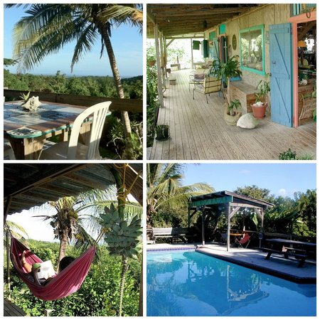 La Finca Vieques: Hard to capture the magic of the Finca; its more like a park