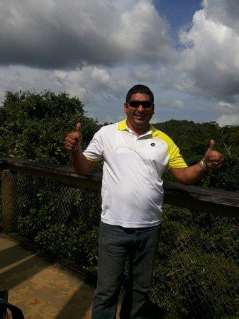 Gamboa Rainforest Resort Guided Bird-Watching Tour: Desde la torre del observatorio de aves en el pipeline road Gamboa Rain Forest.