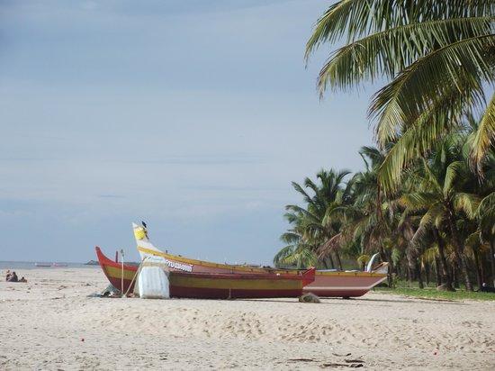Marari Dreamz: Marari beach