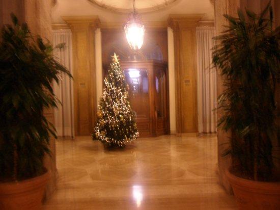 Hotel Miami : l ingresso con il l albero di natale