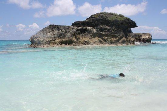 Horseshoe Bay Beach Swimming