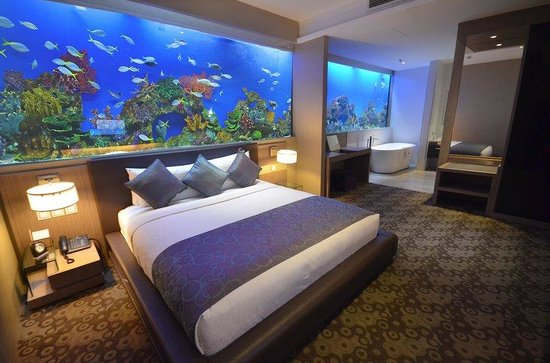 Aquarium Hotel Room Philippines