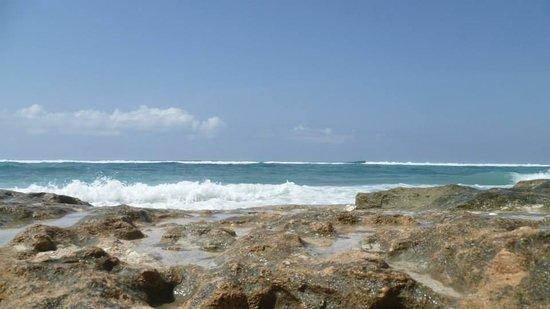 Karma Kandara: ocean