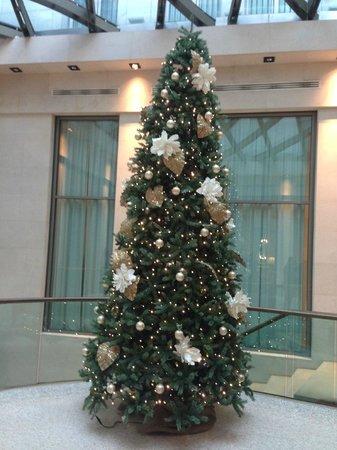 Starhotels Rosa Grand  lobby