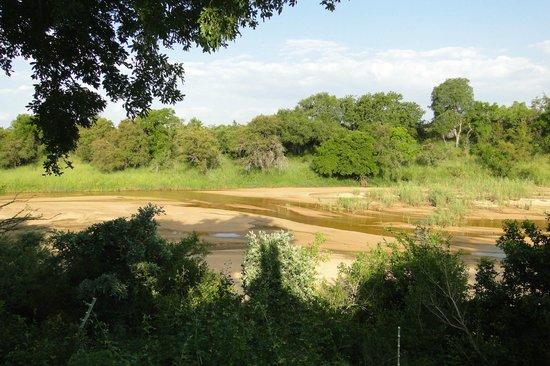 Tamboti Camp: Río