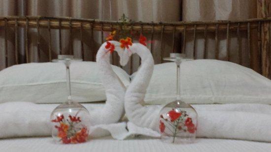 Rainforest Haven Inn: Waiting for our honeymoon couple