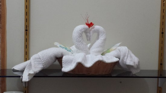 Rainforest Haven Inn: Swans in the bathroom