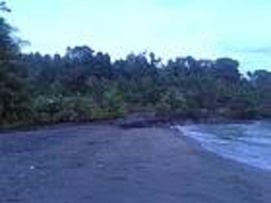 Minahasa Lagoon Dive & Tours Club: Early morning Beach view.