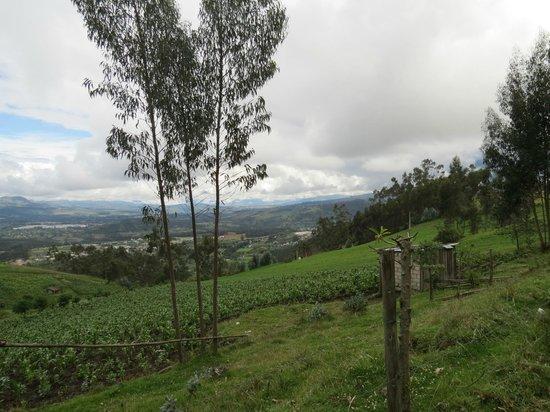 Ali Shungu Mountaintop Lodge: local countryside
