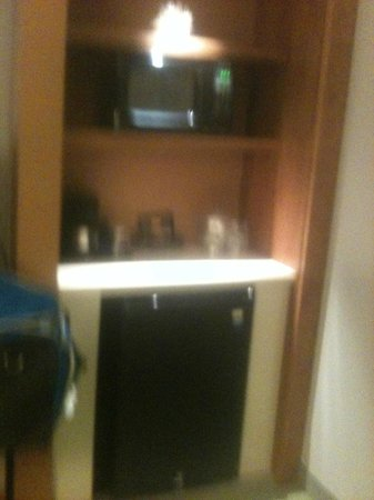 SpringHill Suites Pensacola : One of the Kind Hotel!!