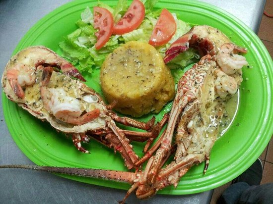 El Nuevo Acuario: I cant believe my eyes!!! I never had one similar to this one. My first lobster!!!! I cant wait