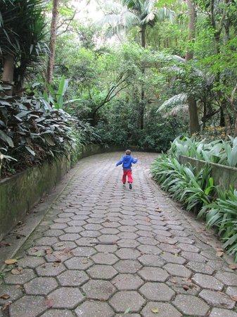 Sao Paulo Zoo: ¡Libertad!
