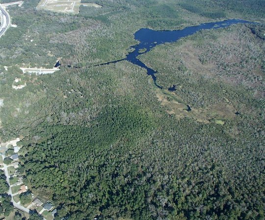 Aerial View Of Lake Griffin State Park