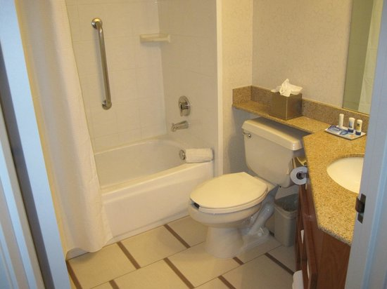 Fairfield Inn Las Vegas Airport: Bathroom