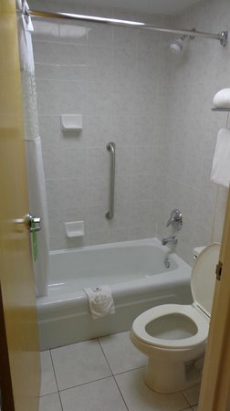 Hampton Inn Clearwater Central: Bathroom