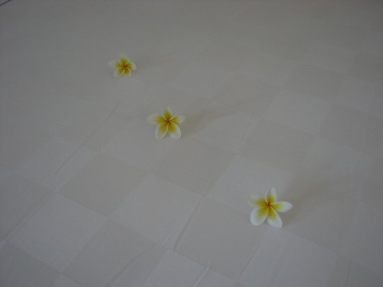 Uma Sapna : Won't find these in the pool!