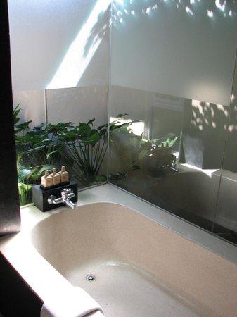 Uma Sapna : Tropical bathroom setting