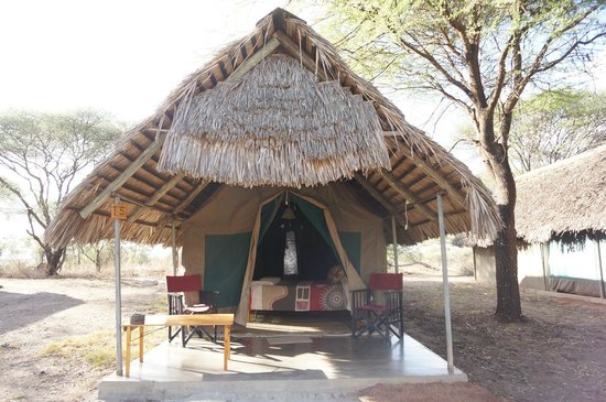 Tarangire Safari Lodge: Our tent