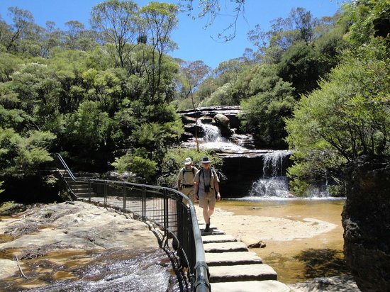 Wentworth Falls : Along the track
