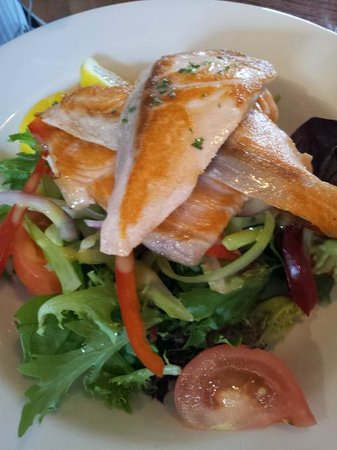 Fish Frenzy: Salmon & Green Salad