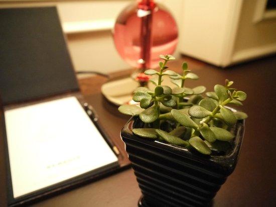The St. Regis Singapore : 寫字檯上的小盆栽