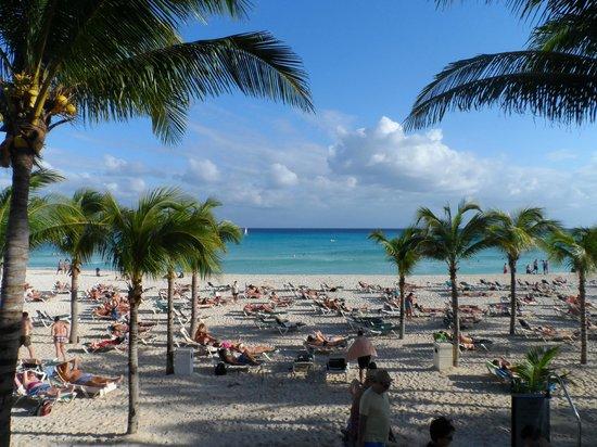 hacia la playa - Picture of Hotel Riu Yucatan, Playa del ...