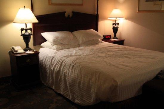 Days Inn & Suites Yellowknife : 一人利用だけどダブルベッドのお部屋でした('ω')