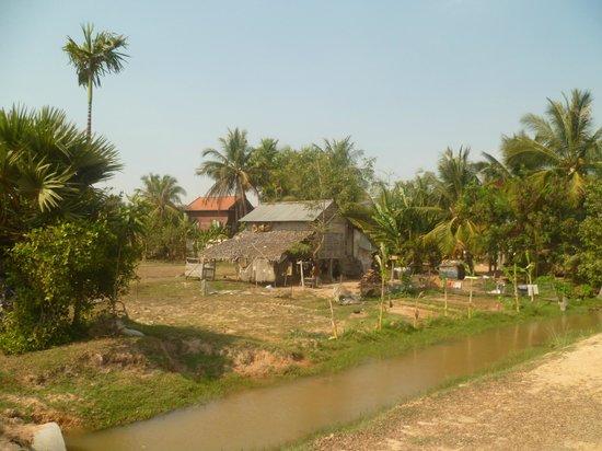 Cool Cambodia