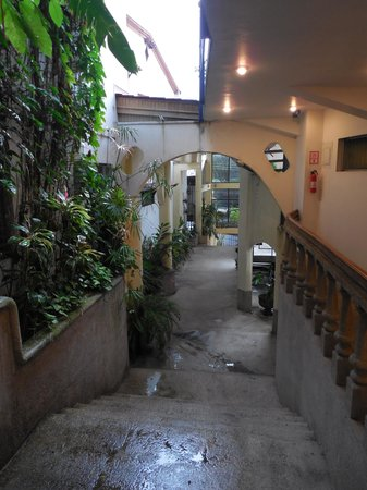 Hotel Cacts: The hotel 'hallway', very tropical.