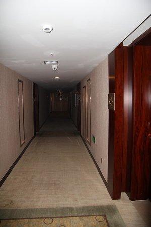 Zijingang International: В коридоре
