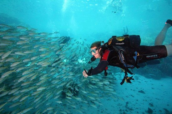 Divers' Lodge : Brad and shoal (end of dive under boat)