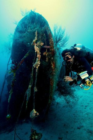 Divers' Lodge : Wreck diving