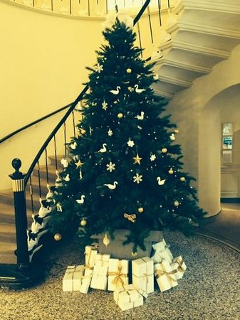 Hotel Navarra Brugge : Christmas tree in reception