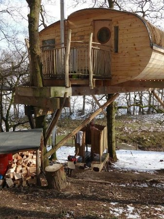 Never seen icicles like it picture of living room for 8 living room tree houses powys