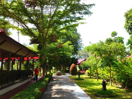 Viva Vacation Resort: Greenary footpath.