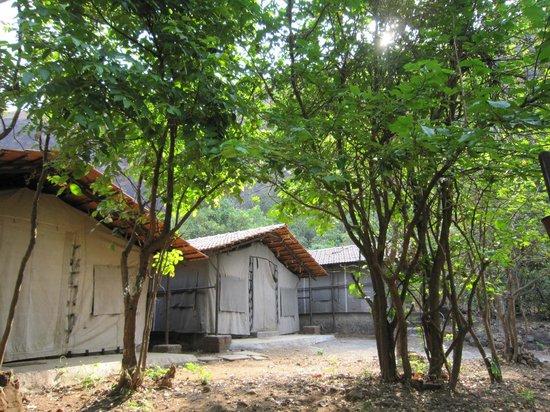 Garudmaachi - ODC - Mountain tents & Garudmaachi - ODC - Mountain tents - Picture of Garudmaachi Pune ...