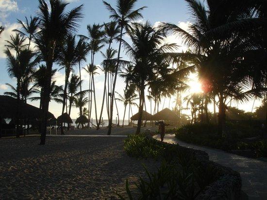 Dreams Punta Cana Resort & Spa: Strand