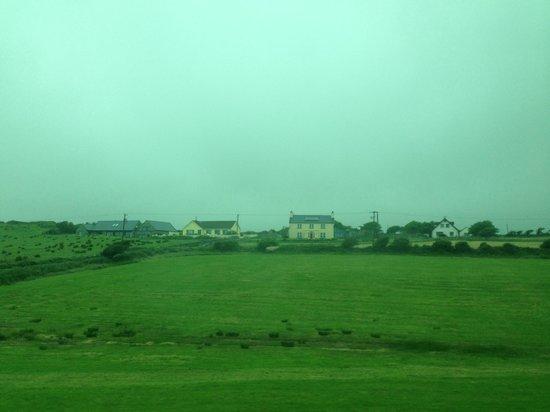 Cliffs of Moher : Ирландский зеленый