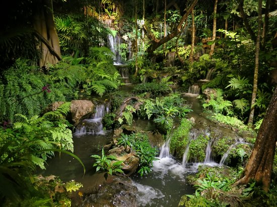 Khaomao-Khaofang Restaurant : Well lit jungle beside eating area