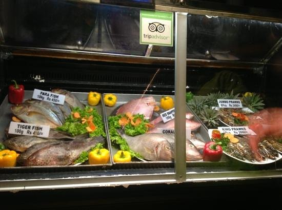 Amal Restaurant : витрина