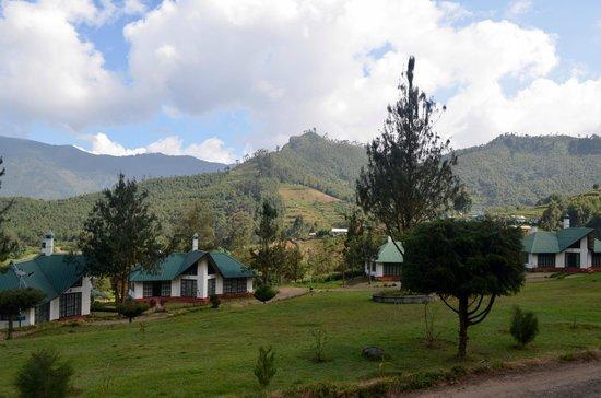 Camp Noel: Other cottages