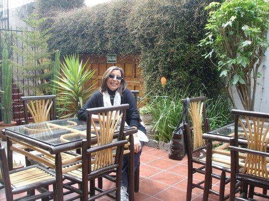 B&B-Hotel Pension Alemana: hermoso lugar para leer,tomar un cafe!