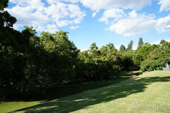 Saxon Hotel, Villas and Spa : Gardens in Hotel