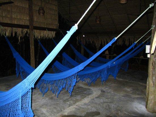 Anavilhanas Jungle Lodge: Quelques hamacs sont à disposition en dehors des lodges