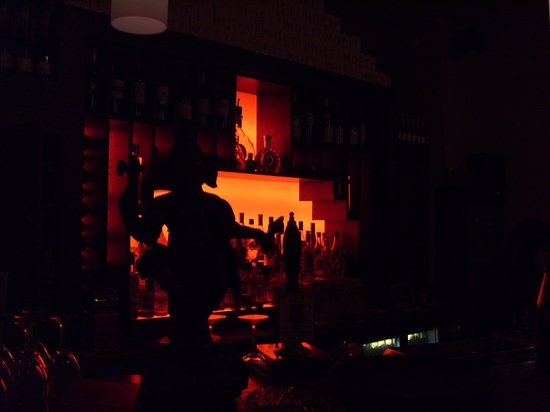 Sachins Restaurant: the dark room bar