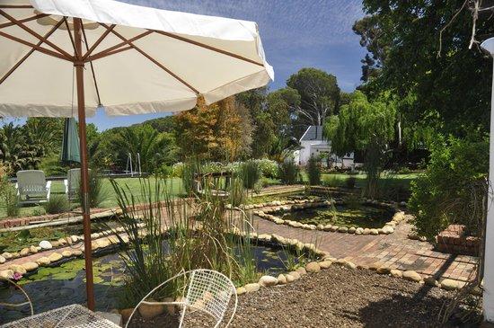 Chelaya Country Lodge: Garden Suite