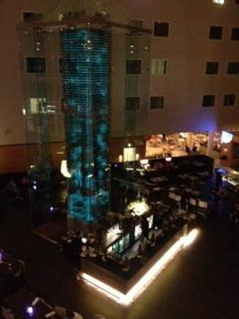 Radisson Blu Hotel London Stansted Airport: la hall di notte